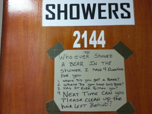 sign gross bear shaving bathroom - 7156475904