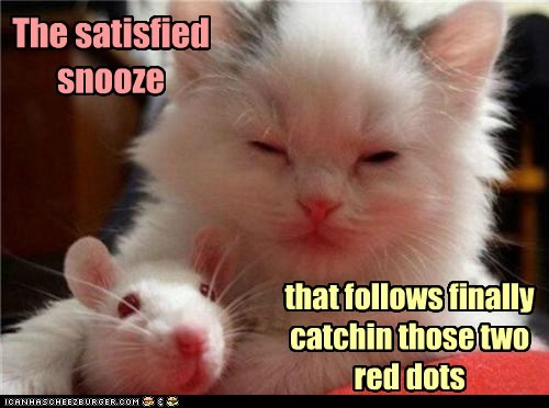 The satisfied snooze that follows finally catchin those two red dots