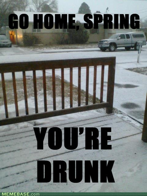 go home you're drunk spring weather - 7157154304