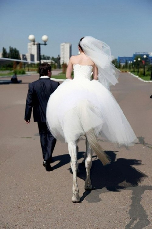 wedding dresses brides horses