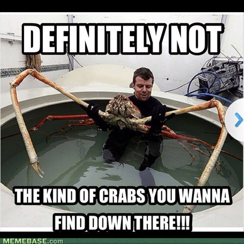 crabs,STDs