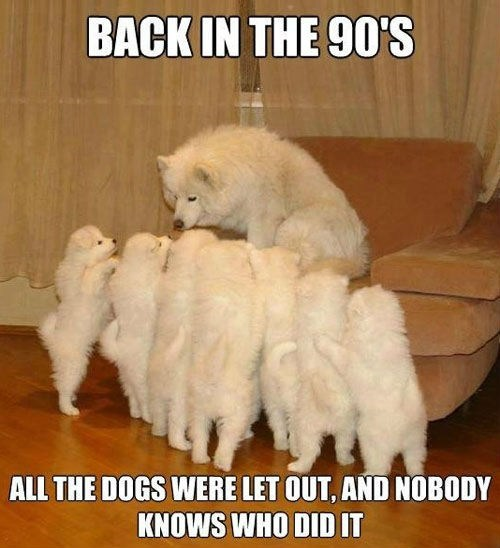 dogs who let the dogs out baha men - 7158647808