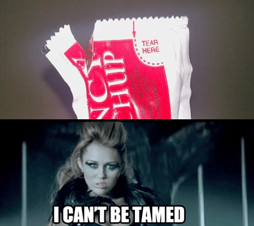 i can't be tamed,miley cyrus,ketchup