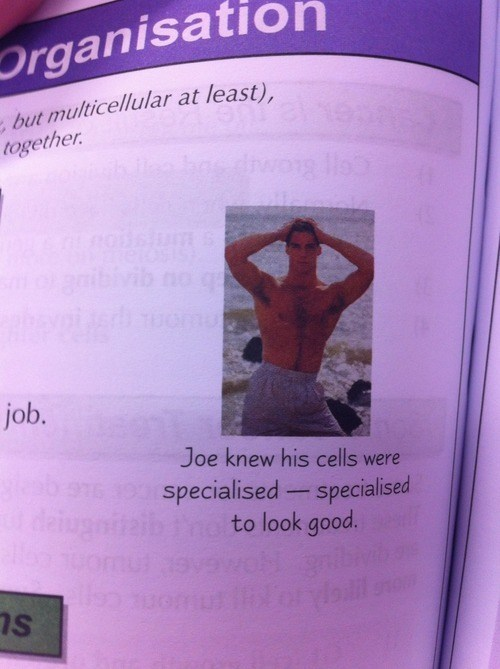 cells,sexy guys,science,text book