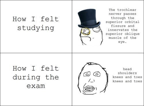 school sir taking a test exam truancy story - 7159008256