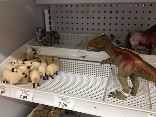 toys,store display,dinosaurs