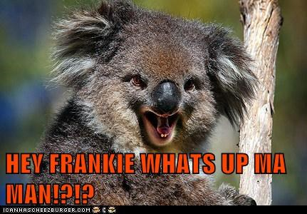 HEY FRANKIE WHATS UP MA MAN!?!?