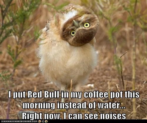 I put Red Bull in my coffee pot this morning instead of water... Right now, I can see noises
