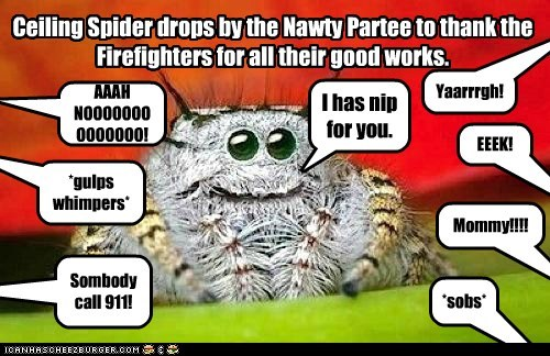 Ceiling Spider drops by the Nawty Partee to thank the Firefighters for all their good works. EEEK! Yaarrrgh! Mommy!!!! *sobs* AAAH NOOOOOOOOOOOOOO! *gulps whimpers* Sombody call 911! I has nip for you.