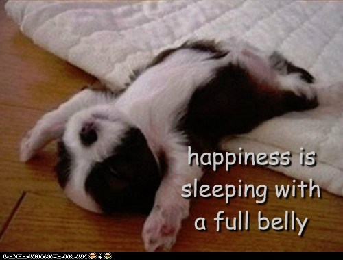 sleeping,happiness