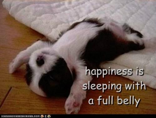 sleeping happiness - 7162717696