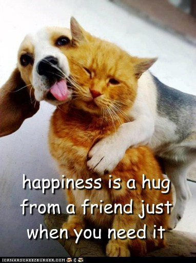 friends hugs - 7162860544