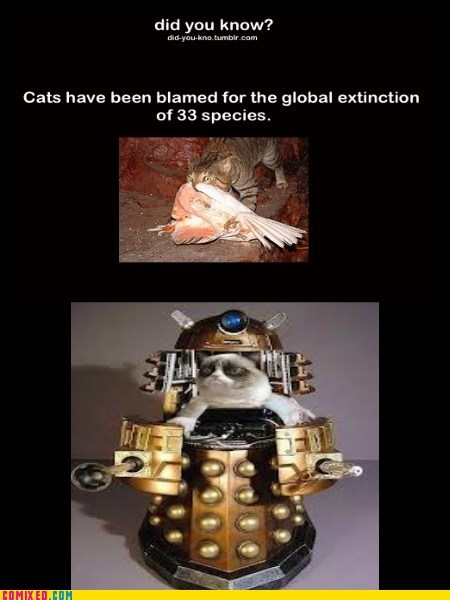 sad but true,daleks,extinction,Cats