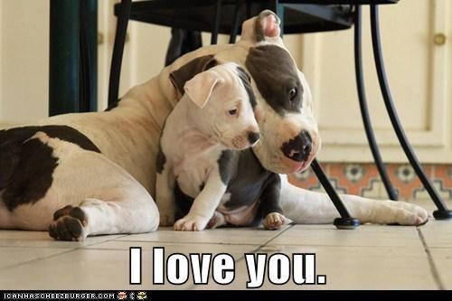tender moments love - 7164484864