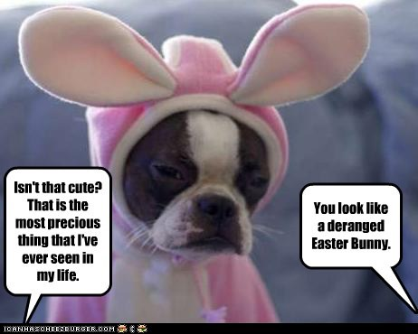 Isn't that cute? That is the most precious thing that I've ever seen in my life. You look like a deranged Easter Bunny.