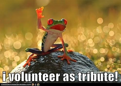 i volunteer as tribute!