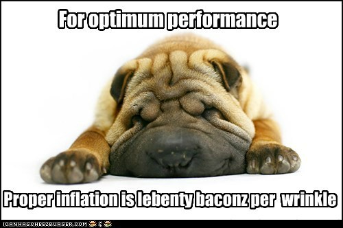 Proper inflation is lebenty baconz per wrinkle For optimum performance