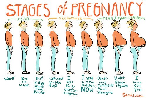 pregnancy comics stages