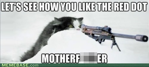 red dot,sniper,Cats
