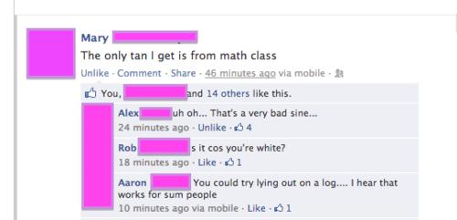 puns,facebook,math