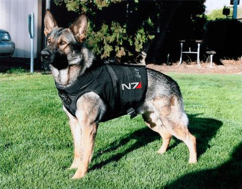 commander shepard dogs mass effect - 7165878016