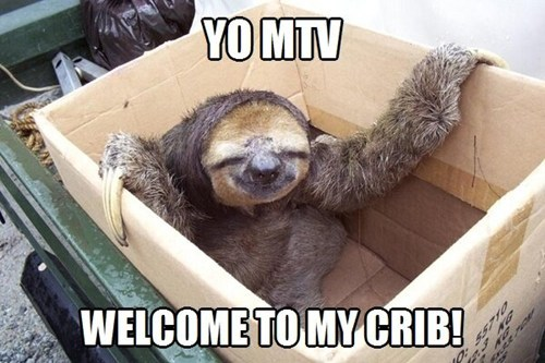 cribs,mtv,sloths