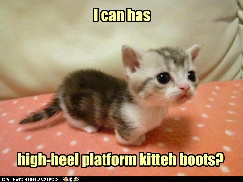 tiny high heels squee kitten Cats - 7166098944