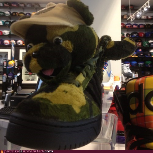 shoes wtf teddy bears funny - 7166114816