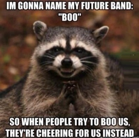 boo,boy bands,evil plotting raccoon