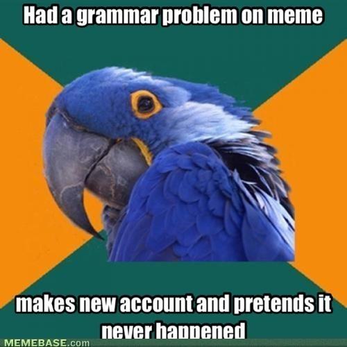grammar,Paranoid Parrot