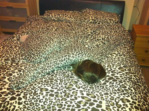 fashion,bed,when you see it,camouflage
