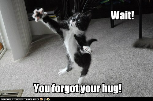 Wait! You forgot your hug!