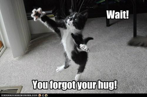 hugs - 7166998016