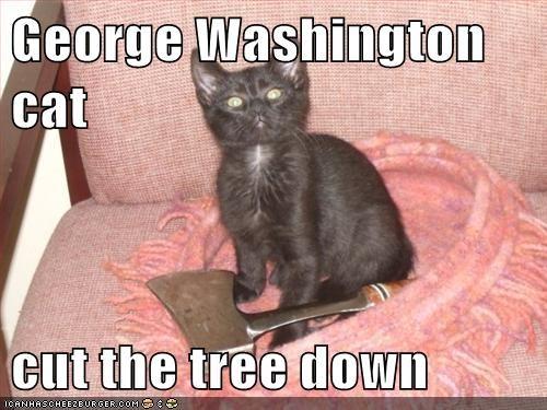 Cheezburger Image 7167719424