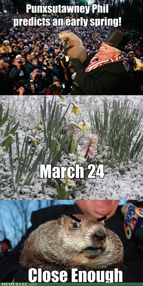 spring,weather,groundhog day,winter
