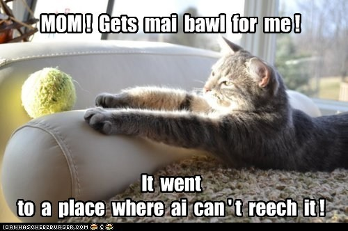 MOM ! Gets mai bawl for me ! It went to a place where ai can ' t reech it !