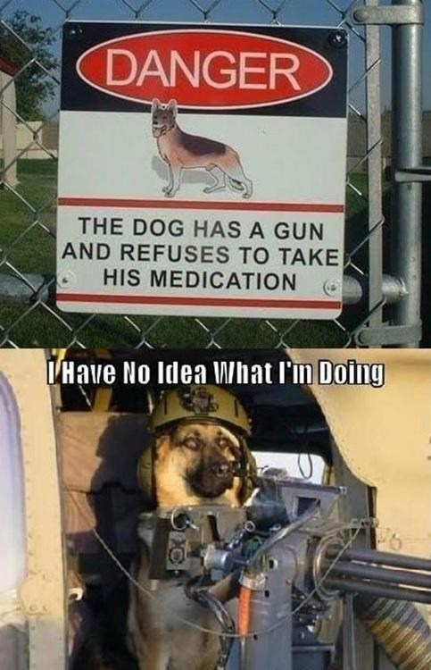 comic i have no idea what im doing dogs - 7168035072