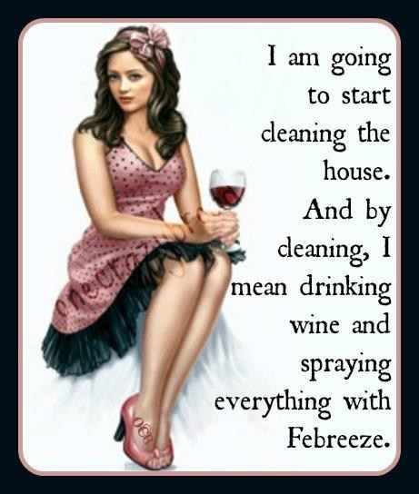 febreeze,house cleaning,wine,after 12,g rated