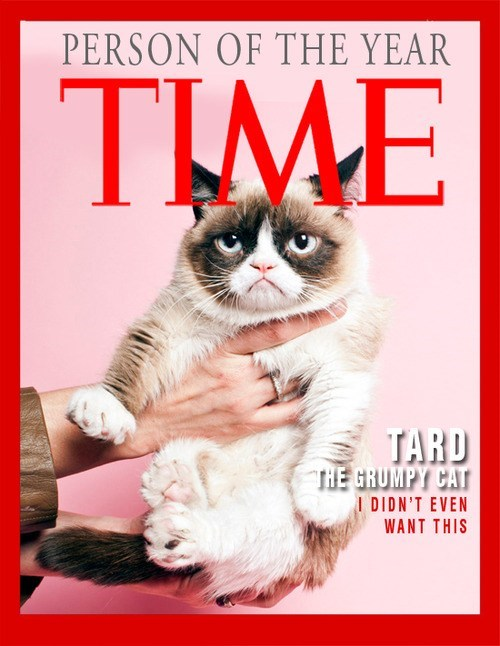 time magazine Grumpy Cat person of the - 7168558080