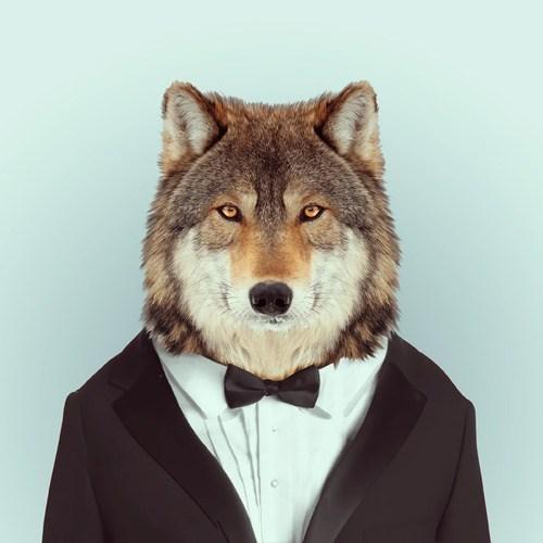 Mammal