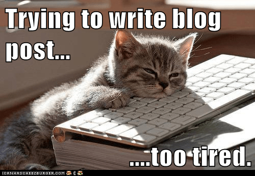 Trying to write blog post        too tired  - Lolcats - lol