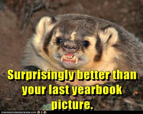 badger,yearbook