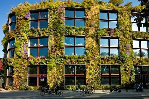 green Botany architecture science - 7173628416