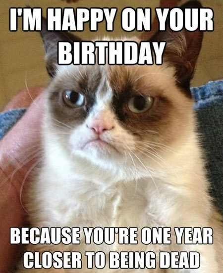 Grumpy Cat birthdays - 7174138368