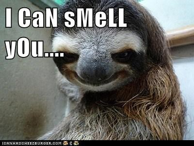 I CaN sMeLL yOu....
