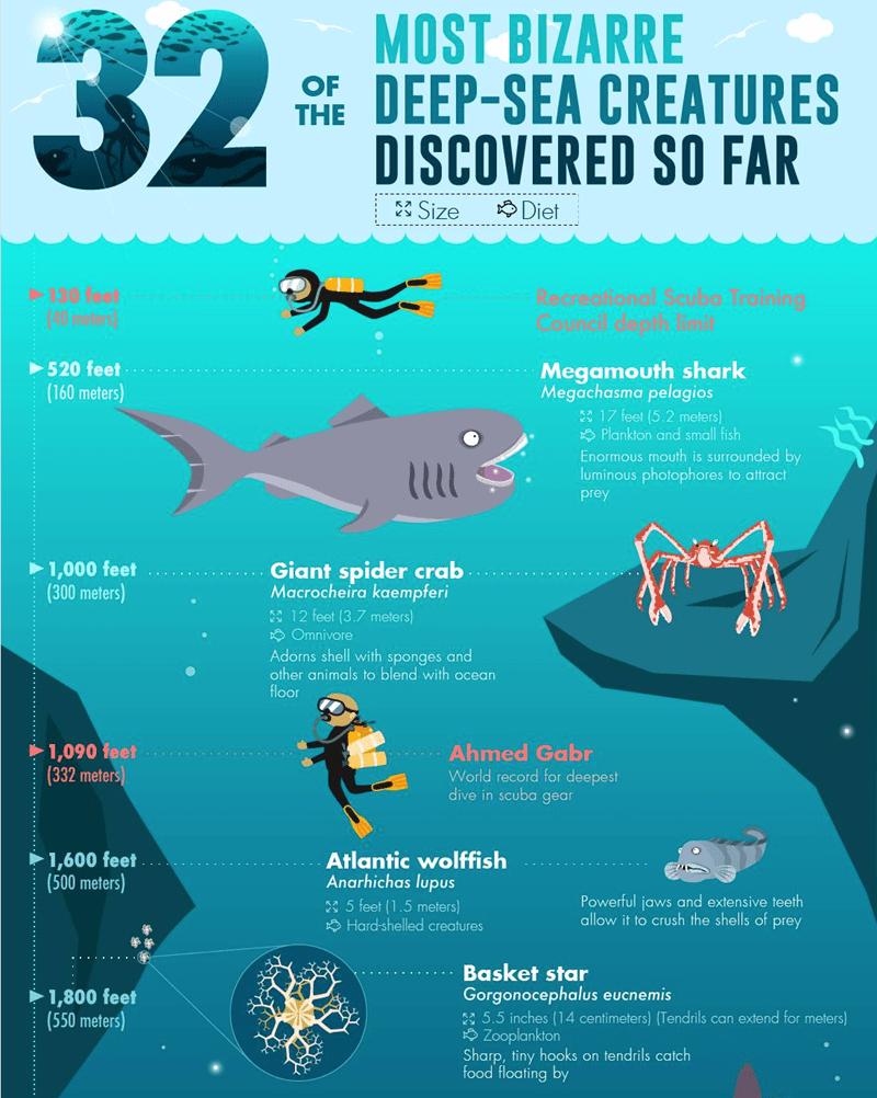 interesting Damn Nature U Scary ocean deep sea infographic - 7179269