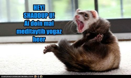HEY! SHADDUP U! Ai doin mai meditaytib yogaz heer
