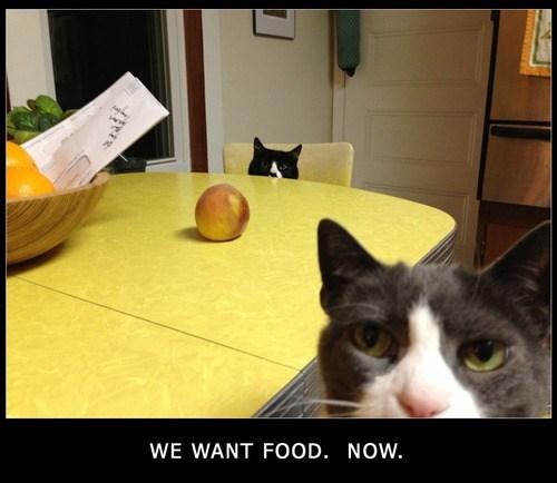 food - 7185431040