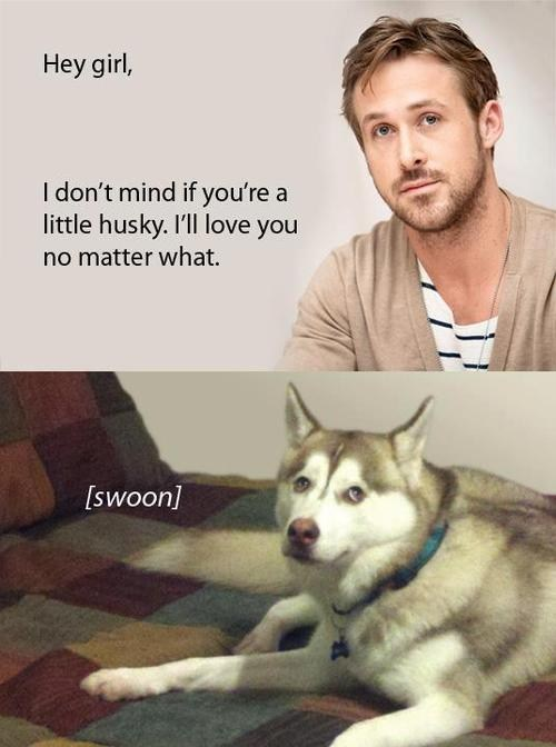 hey girl Ryan Gosling