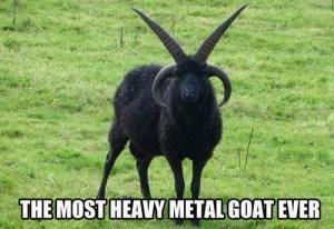 gotas horns heavy metal - 7186502144
